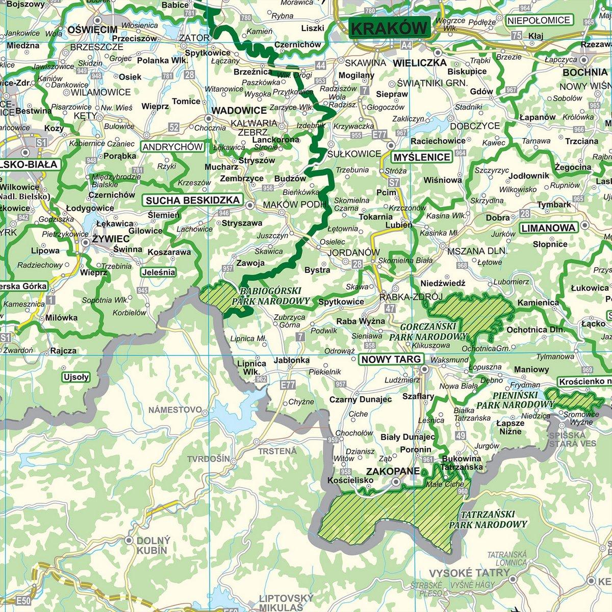 Polska Podzial Organizacyjny Lasow Panstwowych Mapa Scienna 1